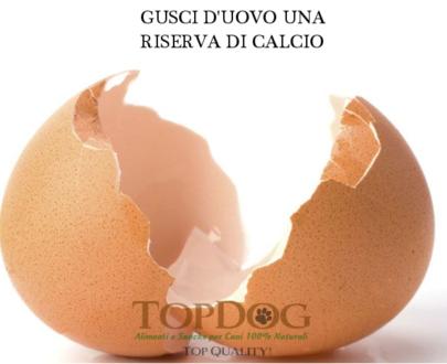 Guscio d'uovo BIO in polvere per cani