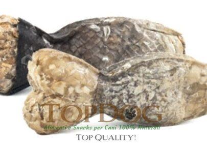Osso di merluzzo per cani, 12 cm